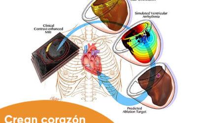 Crean copia virtual de corazón para tratar la taquicardia ventricular